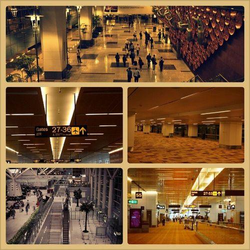 Glimpses of IGI Airport, New Delhi. Igi Airport Newdelhi T3 T1D passenger lounge directions to the gates NineMundras by AyushKasliwal at the canyon wall trevalators engineering marvel