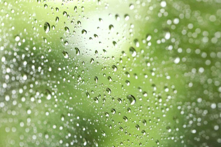 녹색의 푸르름과 여름비의 시원함 . . #하루한컷 #여름비 #초록 #물방울 #빗방울 #5DMARK4 #백마엘 #EF100MMF28LMACROISUSM Water Defocused Backgrounds Full Frame Textured  Drop Abstract Close-up Grass Green Color
