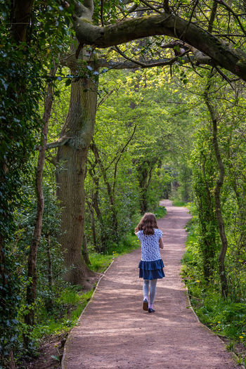 Beauty In Nature Casual Clothing Day Diminishing Perspective Footpath Forest Full Length Green Color Growth Leisure Activity Lifestyles Nature Outdoors Pathway Plant Rear View The Way Forward Tranquil Scene Tranquility Tree Tree Trunk Vanishing Point Walking Walkway