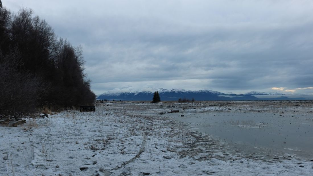 Coast of Anchorage, Alaska facing the Turnagain Arm. December 2017. By Olafur Engelby Alaskan Nature Alaska Anchorage Anchorage Alaska Winter Snow Cold Temperature Weather Nature Sky Cloud - Sky Beauty In Nature Landscape Scenics Day Outdoors No People Mountain