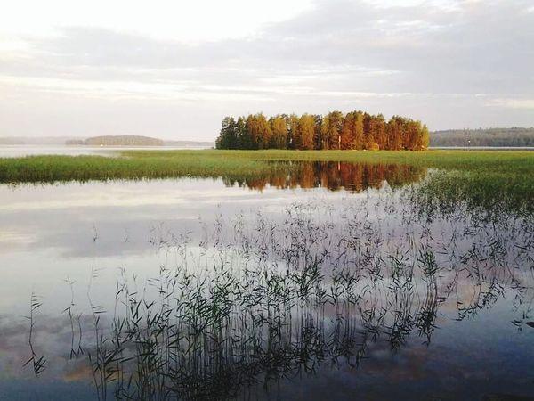 Nature Lakes  Summertime Summer Night Sunset Päijänne Finland