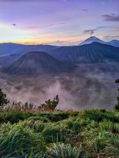 Bromo Mountain Beauty INDONESIA Indonesia_photography Grass Sky And Clouds Landmark Landscape Travel Destinations Traveling Travel Photography Mountain Golden Hour Sunrise Tree Mountain Dawn Fog Volcanic Landscape Morning Volcano Sky Landscape Volcanic Crater Bromo-tengger-semeru National Park East Java Province Java Volcanic Rock Mountain Peak Volcanic Activity