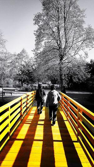 Togetherness Shadow Outdoors Sunlight Adult Day Brige Puente Sombras Sombras Y Luces... Amigas❤ Caminantes Viajerosporelmundo Travel Destinations