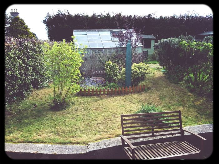 garden has received some long overdue attention. still a bit ropey but getting there.