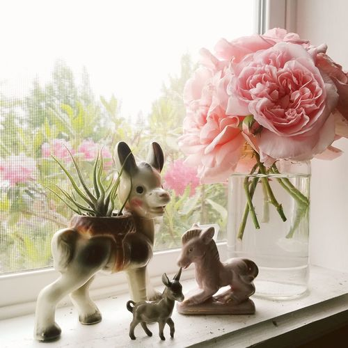 Roses Flowers Window Airplant Planter Donkey Figurines  Pink Roses Millenial Pink Nature Beauty