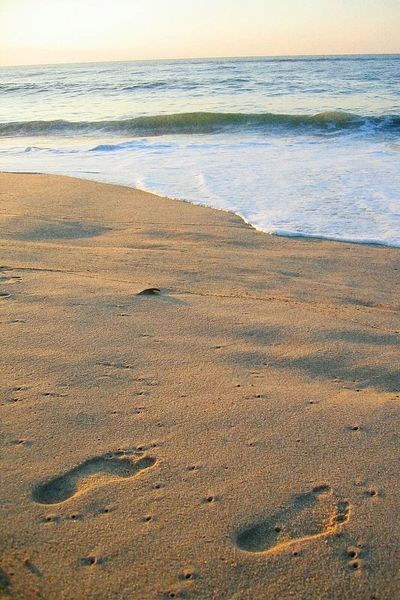 I wish I was there, On The Beach. Making Footprints on the Sand, walking by the Waves, Watching The Sunrise. Footprints In The Sand Beachphotography Life Is A Beach