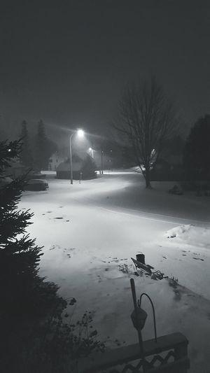 Winter Wonderland Canada IceStorm The City Light