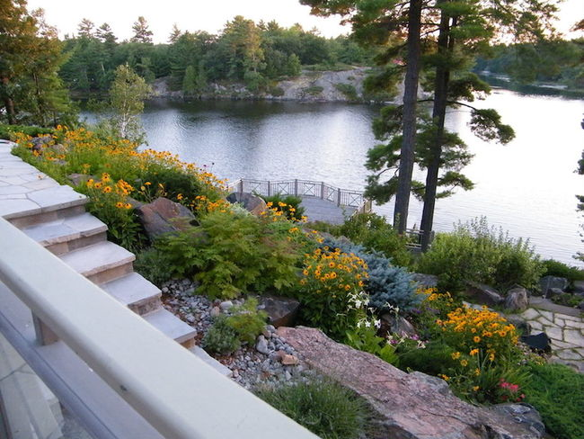 Lake front garden Beauty In Nature Flower Collection High Angle View Lake Outdoors Tranquil Scene Tranquility View From Above Water