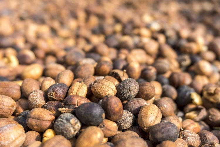 coffee beans with bokeh Coffee Coffee Beans Bokeh Caffeine Brown Background Costa Rica Monteverde Java Beach Pebble Beach Backgrounds Full Frame Sunny Seafood Close-up Food And Drink