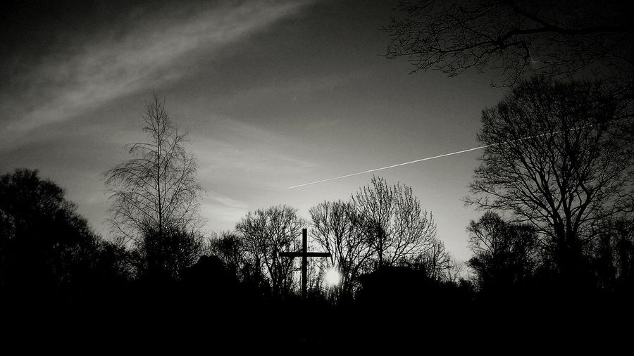 Crossing cross. Silhouette Tree No People Nature Outdoors Pixelated Sky Beauty In Nature Crosscountry Cross Crossroad Blackandwhite Photography Blackandwhitephoto