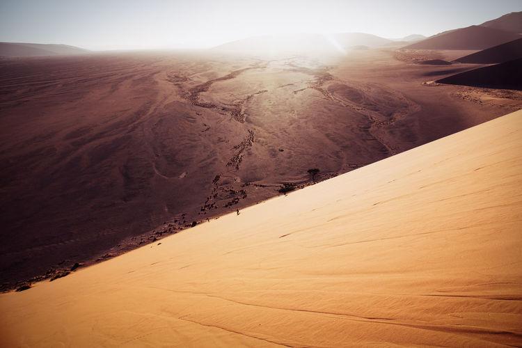 Scenic view of sand dune at namib desert