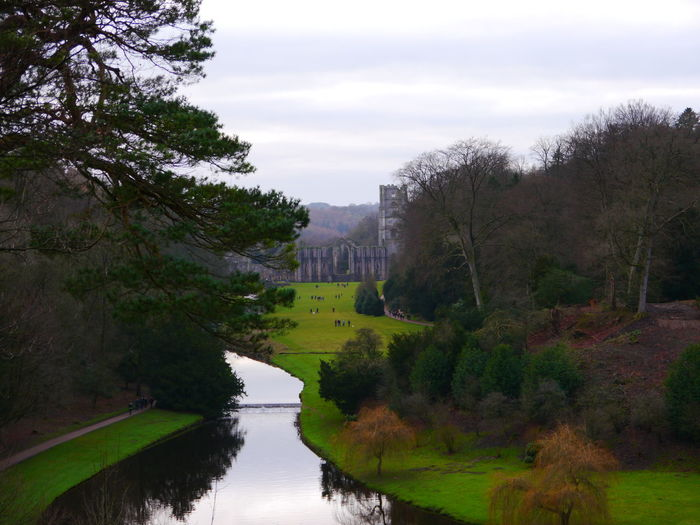 Architecture Beauty In Nature Cloud - Sky Day December December 2016 Fountains Abbey Fountains Abbey Yorkshire Fountains Abbey, Yorkshire Growth History Landscape Nature No People Outdoors River Scenics Sky Tranquil Scene Tranquility Travel Destinations Tree Water