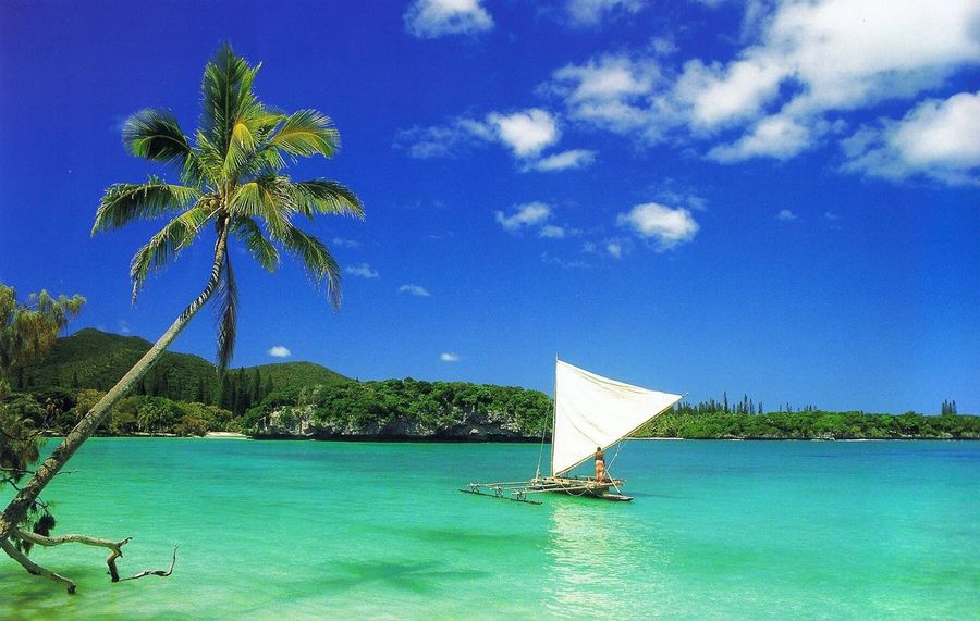 New Caledonia 🇳🇨 Mon île 🏝☀️🌺🌴 Ile Des Pins 😍👌🔐
