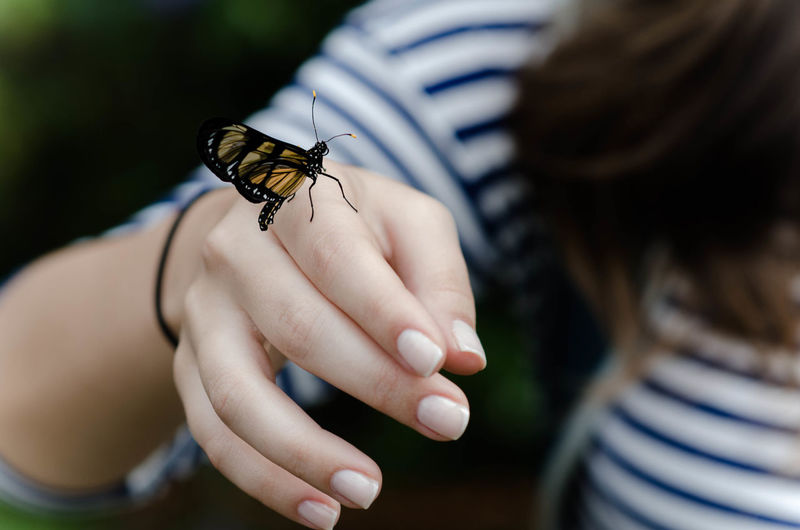 Close-up of butterfly on woman