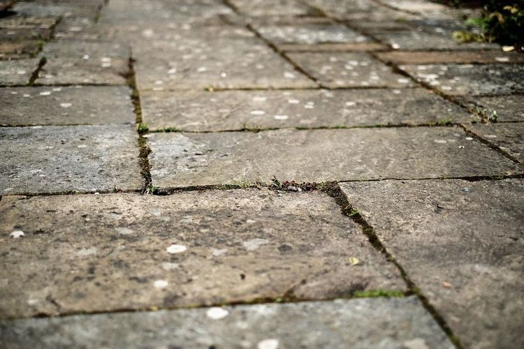 Close-up Patio Texture Textures And Surfaces Textures Textures And Patterns Stone Stone Material Outdoors No People Indian Sandstone
