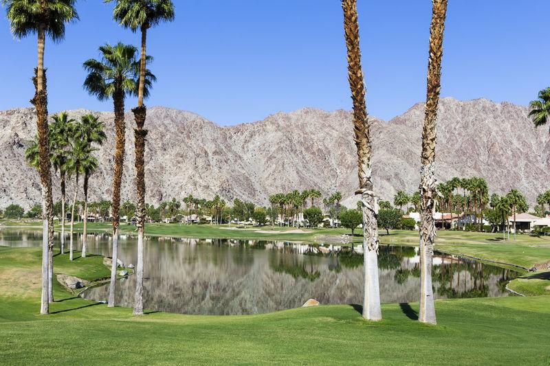 Pga West golf course in La Quinta, Palm Springs, California, usa Fairway Golf Golf Course Green La Quinta Mountains Palm Springs Palm Springs CA. Palmtree Pga West