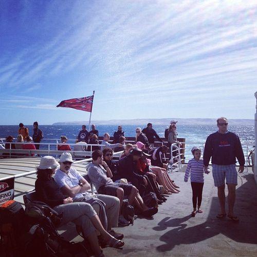 Goodbye Fleurieu Sealink Backstairspassage Southaustralia Kangarooisland ferry