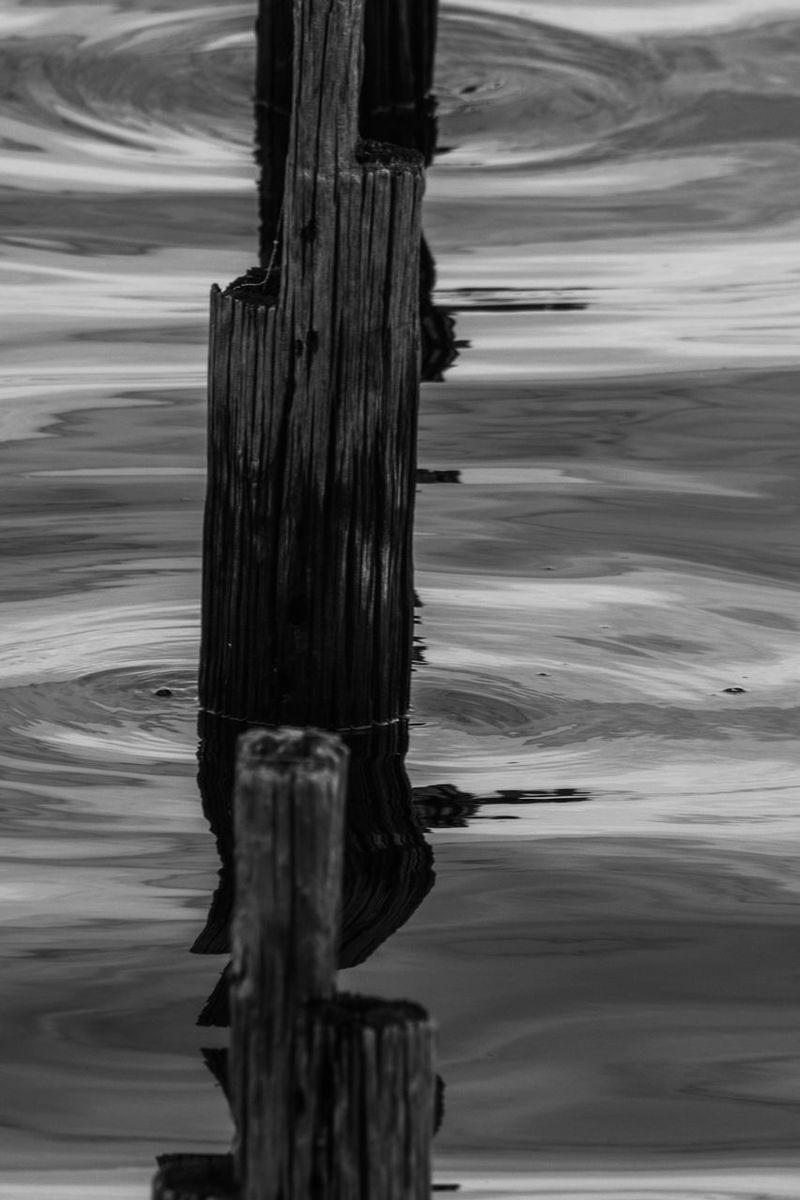 EyeEm Best Shots EyeEm Best Shots - Black + White Lake Monroe Sanford Florida Blackandwhite Photography Blackandwhite Reflection Reflections Water Reflections GayneGirlPhotography EyeEm Gallery Eyembestshots EyeEmBestPics Eyeemphotography Eye4photography  EyeEm Eyemphotography
