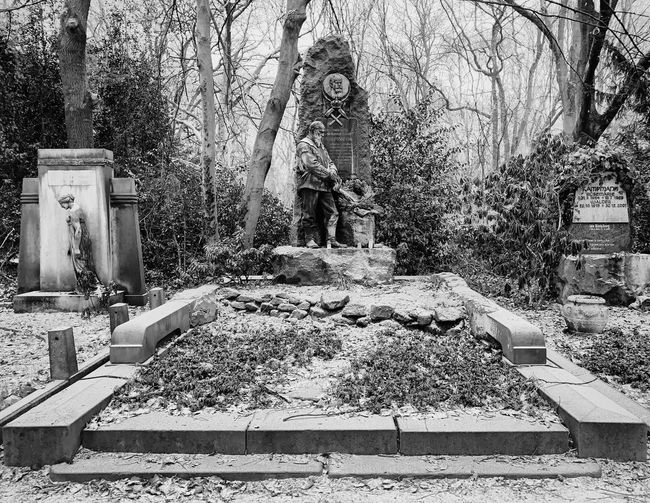 Ostfriedhof. 7/7 Photooftheday Photography Photographer EyeEm Best Shots EyeEmBestPics EyeEm Selects EyeEm Best Edits EyeEm Gallery Blackandwhite Photography Black And White Blackandwhite Check This Out Capture Close-up Snow Built Structure Architecture Day Building Exterior Building No People Sunlight Nature Outdoors Wall - Building Feature History Pattern Tree The Past Solid