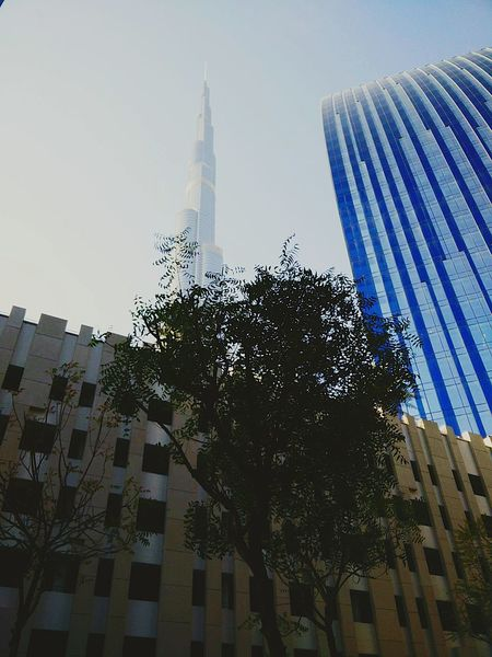 Sightseeing Tourists View Historical Sights Burjkhalifa Downtowndubai Dubai❤ Buildings & Sky Tallestbuilding Mydubai