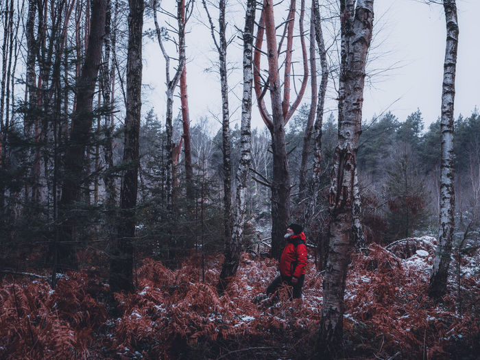 Man standing by trees in forest