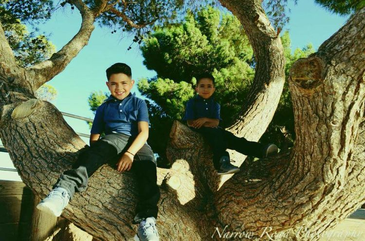 B R O T H E R S Togetherness Tree Family Happiness Boys Smiling Looking At Camera Son Day People Child Adult Portrait Adventure Outdoors Male Friendship Sitting