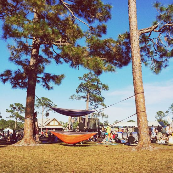 Hammock Tree Nature Outdoors Beach Tree Trunk Sky Sea Day Sunlight Vacations Beauty In Nature Growth Travel Destinations Scenics Nautical Vessel Real People Palm Tree Water Okeechobee EyeEmNewHere Music Festival