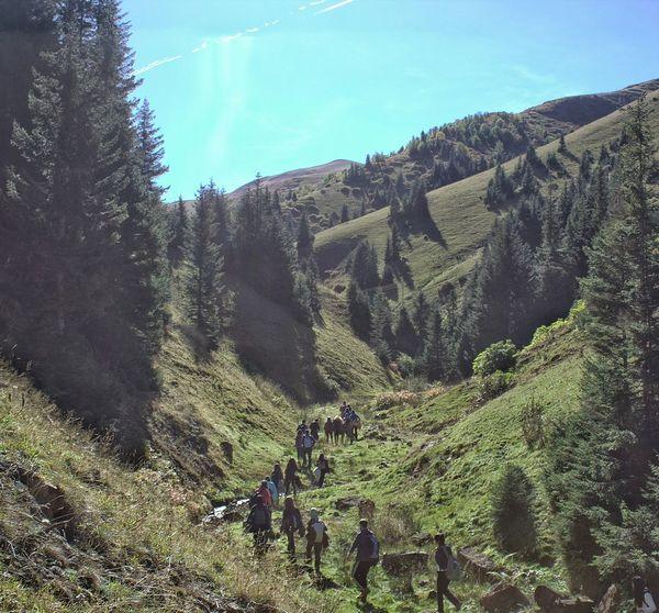 Kümbet  Giresun Yayla Dağ Mountain Plato Discipline Trekking Hiking Turkey Karadeniz Blacksea GUDAKT Dağcılık