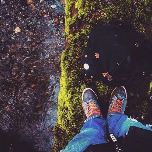 Tree 20ftdrop River lol😃
