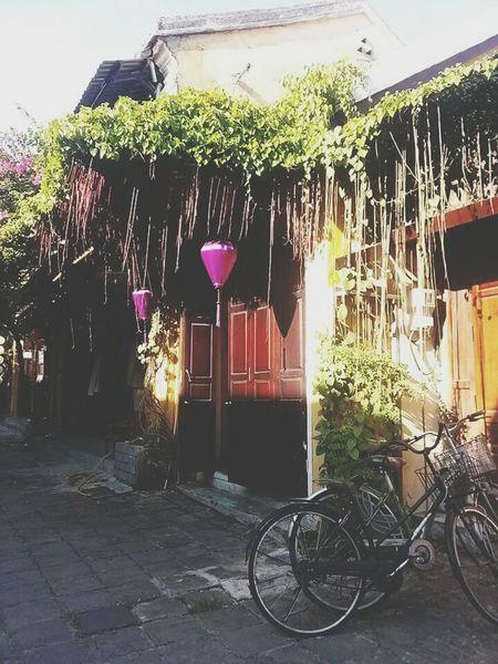 Hoian  Vietnam Traveling