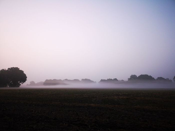 The fog Eyemphotography Eyem Best Shots Cycling Bycicle Morning Light Sunlight Sunrise Tree Fog Water Agriculture Irrigation Equipment Field Landscape Sky Extreme Weather