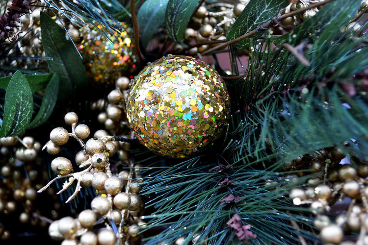 Close-up of shiny bauble on christmas tree