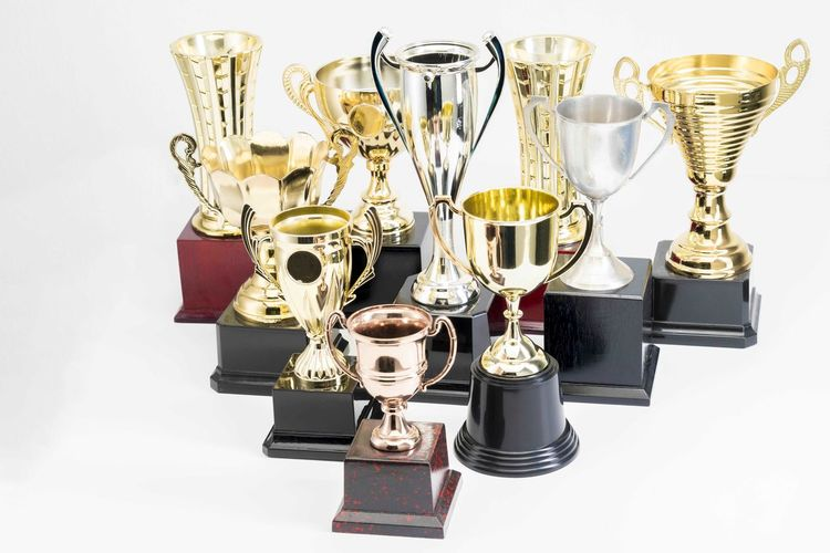 Variety of Trophy Cup on white background AWARD Trophy Winning Success Achievement Studio Shot Still Life Metal Indoors  Medal Gold Colored Competition Shiny No People White Background Cut Out Pride Close-up Emotion Silver Colored