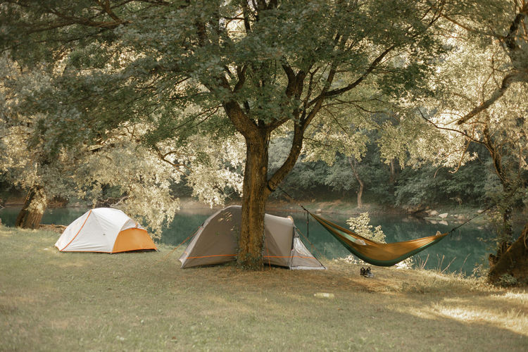 Tent by trees on land