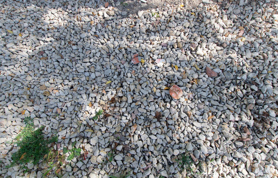 Utrillas Terual Moseo minerio y alrededores. Octubre 2018 2018 October Teruel Utrillas Abundance Backgrounds Change Close-up Day Directly Above Eddl Full Frame Gravel High Angle View Land Large Group Of Objects Leaves Nature No People Outdoors Pebble Plant Rock Solid Stone Stone - Object Textured