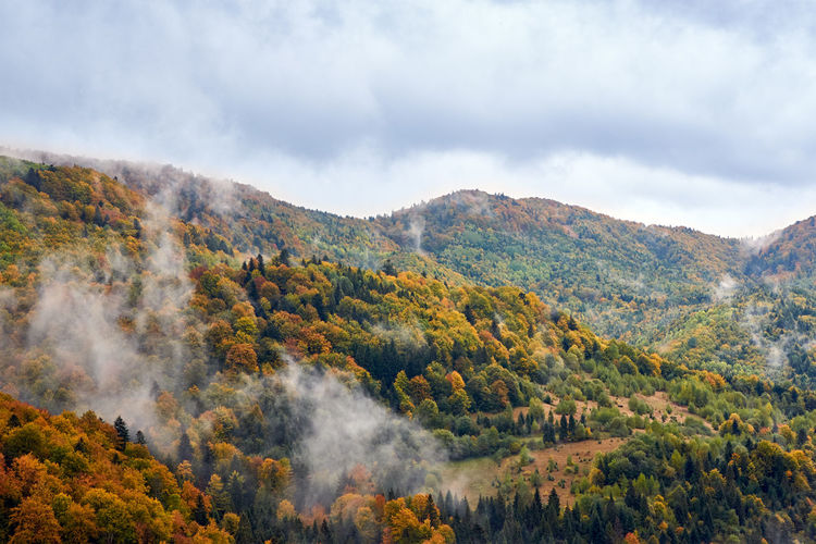 Autumn Beauty In Nature Change Cloud - Sky Day Ethereal Geology Majestic Mountain Mountain Range Multi Colored Nature Non-urban Scene Outdoors Physical Geography Scenics Sky Tourism Tranquil Scene Tranquility Travel Destinations Tree Valley Wilderness WoodLand Perspectives On Nature
