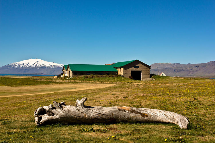 Scenic view of grassy field with house in background