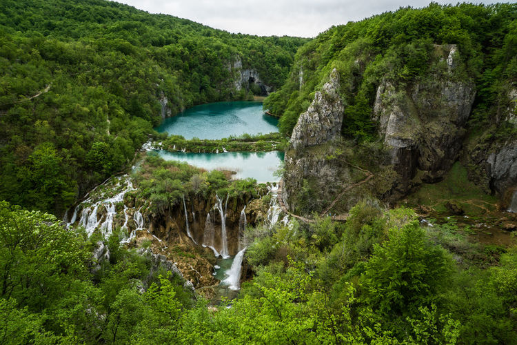 Plitvice Lake National Park, Croatia Beauty In Nature Day Flowing Flowing Water Forest Green Color Growth Idyllic Lush Foliage Motion Mountain Nature Non-urban Scene Outdoors Plant Plitvice Lake National Park Plitvice National Park Rock - Object Rock Formation Scenics Tranquil Scene Tranquility Tree Water Waterfall