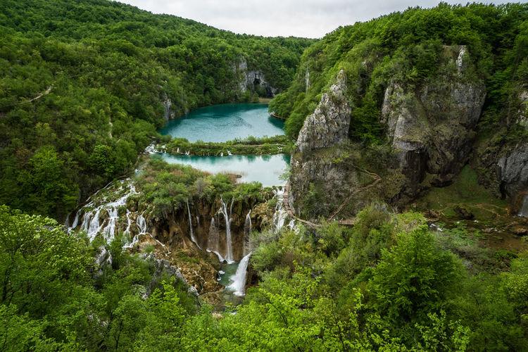View of waterfall along lush foliage