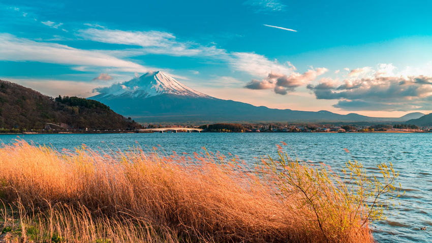 Mount Fuji at Kawaguchiko lake. Beauty In Nature Cloud - Sky Day Environment Grass Idyllic Lake Mountain Mountain Peak Mountain Range Nature No People Non-urban Scene Outdoors Plant Scenics - Nature Sky Snowcapped Mountain Tranquil Scene Tranquility Travel Destinations Water