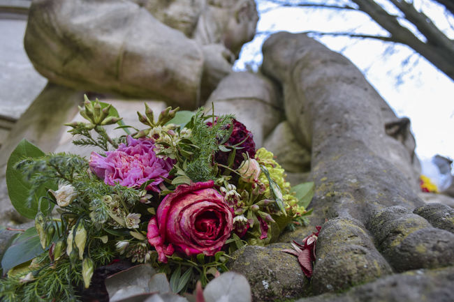 Cemetery Grief Mourning Beauty In Nature Bouquet Close-up Day Flower Flower Arrangement Flower Head Flowering Plant Fragility Freshness Growth Leaf Nature No People Outdoors Plant Plant Part Rosé Rose - Flower Vulnerability