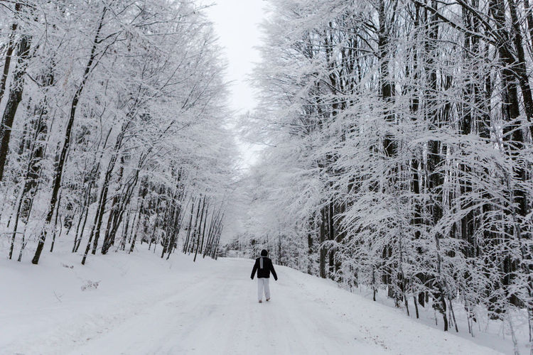 Man On Snow Covered Trees Against Sky