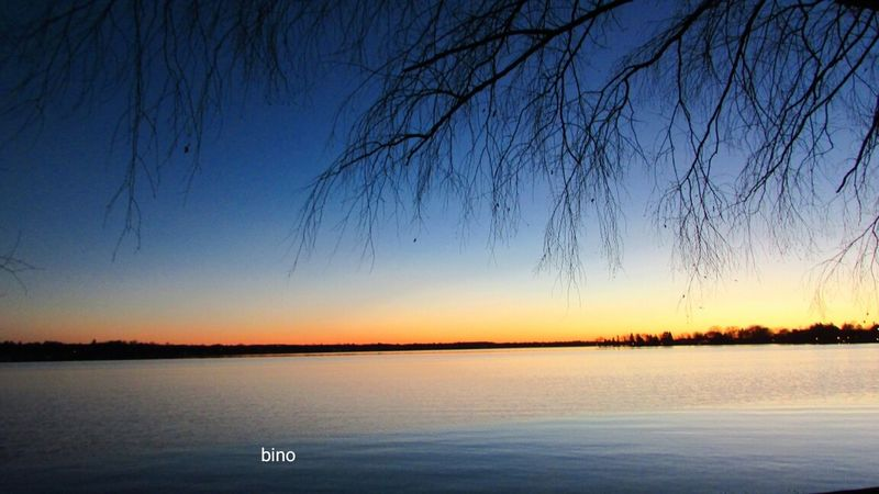 Sunset Stroll Tranquil Scene Around The Lake Under The Willow Tree Beautiful Night Sky Lake Cadillac Pure Michigan