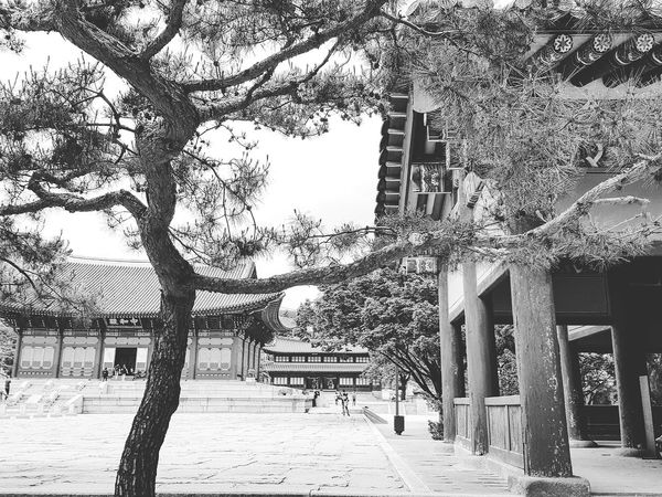 Deoksugung Palace Palace Architecture Seoul Architecture Joseon Dynasty Five Centuries Korean History Korean Culture Bnwphotography Bnwseoul Tripwithson2017 Tripwithsonmay2017 Seoul South Korea
