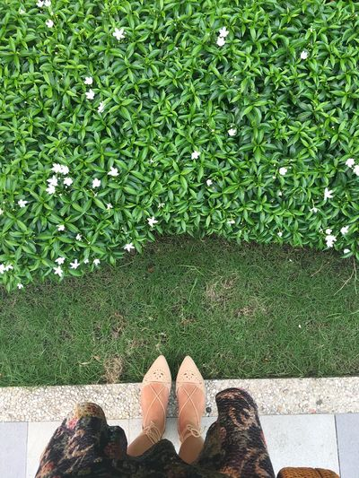 Human Body Part Human Leg Low Section Green Color Grass Shoe Standing High Angle View Human Foot Real People Day One Person Outdoors Plant Growth Nature Women Men Beauty In Nature Adult Eyeem Philippines