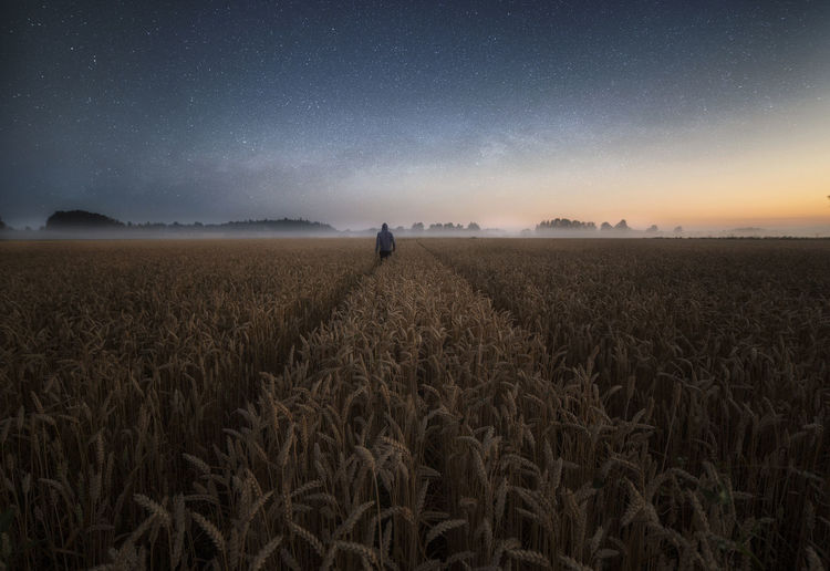 Rear view of man standing on agricultural field against starry sky at night