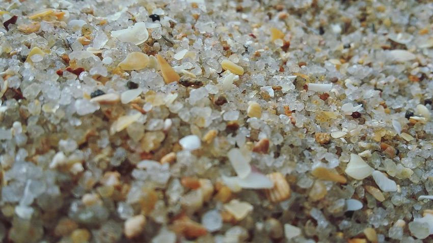 Full Frame Backgrounds Beauty In Nature Nature Outdoors Close-up Macro Photography Macro Macro World Canon Camera Canonphotography Canon Travel Photography Beach Sand Sand & Sea Dayoff EyeEm Nature Lover EyeEm Best Shots