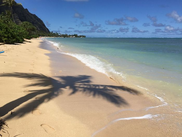 IPS2015Summer Hawaii Iphone6plus Surfing