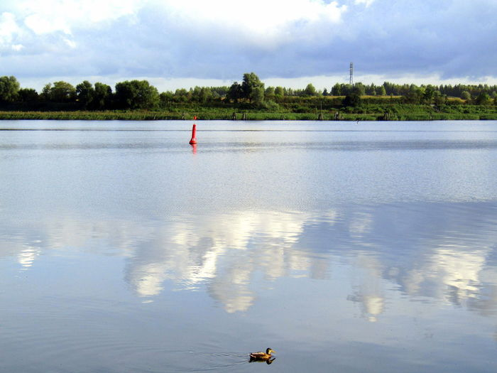 2017 An Der Warnow--Rostock--heute Früh- Beauty In Nature Outdoors Reflection Water