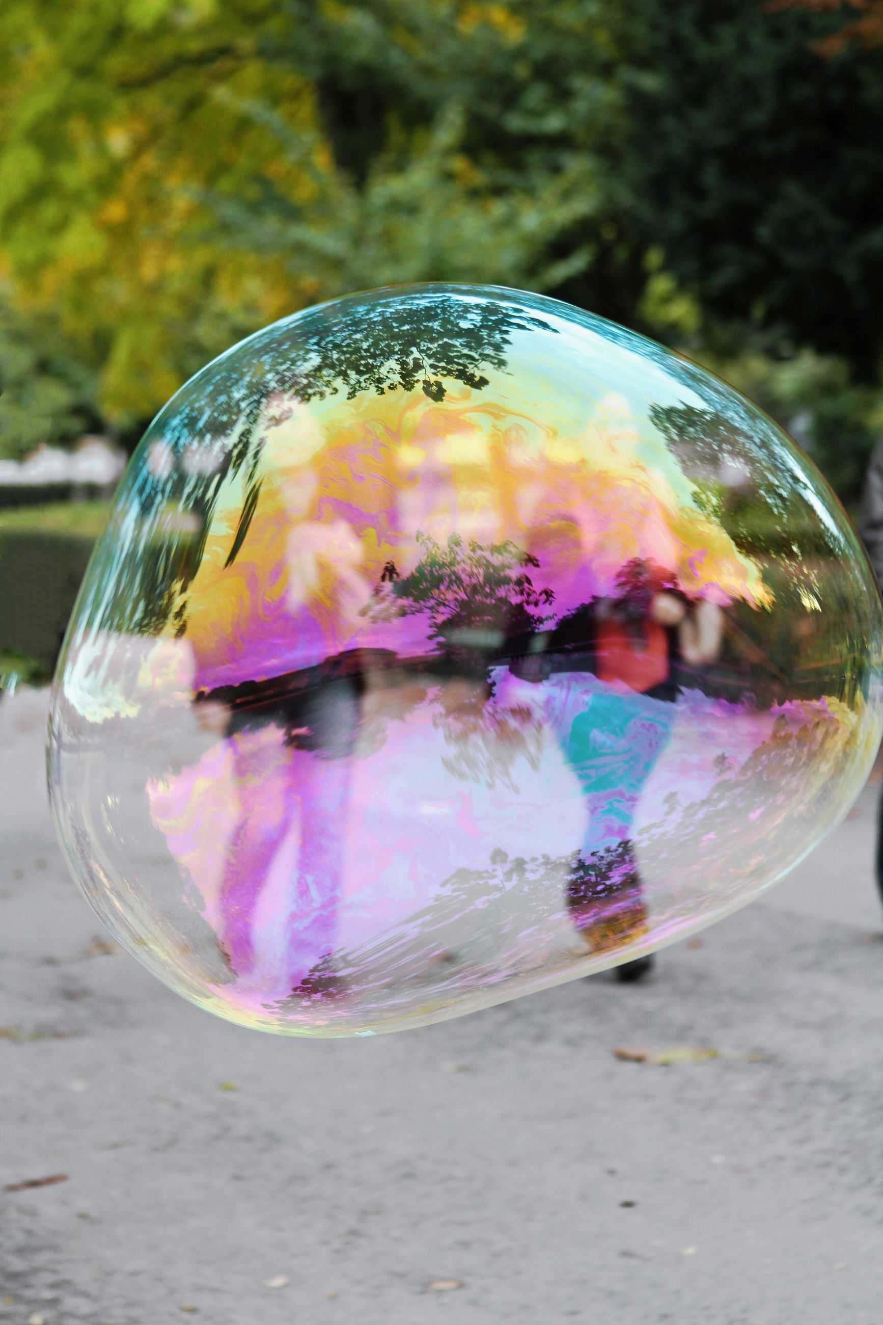 close-up, transparent, glass - material, bubble, multi colored, focus on foreground, sphere, fragility, reflection, animal themes, animals in the wild, day, no people, glass, outdoors, nature, water, wildlife, freshness, soap sud